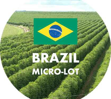 NEW LIMITED COFFEE – BRAZIL!